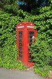 Telefoongesprek van de wildernis Royalty-vrije Stock Fotografie