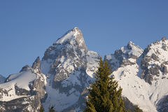 Telefotoansicht von Schnee-mit einer Kappe bedeckten großartigen Teton-Spitzen Stockfotos