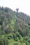 Teleféricos de Juneau Fotografia de Stock