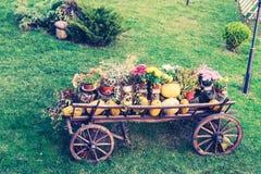 Telega rural ukrainien sur une pelouse photos libres de droits