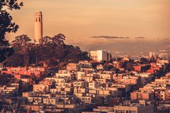 Telegraph Hill San Francisco Royalty Free Stock Images