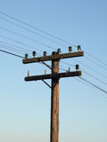 Telegraph pole. On blue background Stock Photos