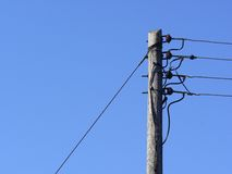 Telegraph pole Stock Images