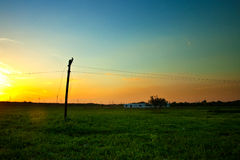 Telegraph pole at dusk Royalty Free Stock Image