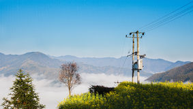 A telegraph pole on the hill Royalty Free Stock Images