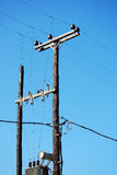 Telegraph poles Stock Images