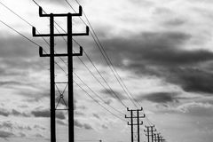 Telegraph poles. Black and White picture Stock Images