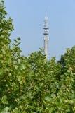 Telekommunikation Pole lizenzfreies stockbild