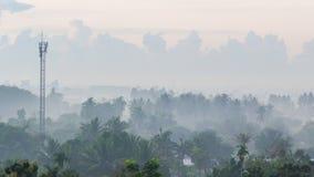 Telekomunikacyjna poczta po środku kokosowego drzewa Obraz Stock