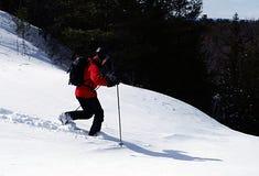 Telemark Turns. Free heeling on telemark skis in virgin snow, Wasaga Beach, Ontario Stock Photography