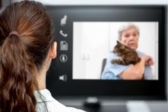 Telemedicine with the veterinarian, vet looking at the desk, elderly woman and a cat on live chat. Telemedicine with the veterinarian, vet looking at the desk stock photos