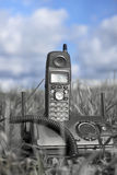 Telephone In Fied Royalty Free Stock Photo