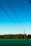 Telephone Lines Leading To The Forest Royalty Free Stock Image