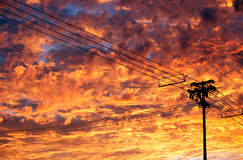 Telephone Lines over Bright Sunset Clouds Stock Image