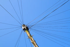 Telephone pole. Stock Photography