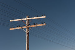 Telephone Pole Stock Image