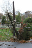 Telephone pole broken in half during Super Storm Sandy. A telephone pole with electric wires breakes in half and falls during super storm sandy on long island Royalty Free Stock Image