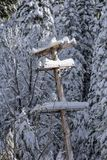 Snow covered telephone pole royalty free stock image