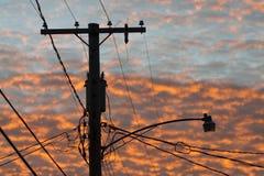 Telephone pole. Stock Image