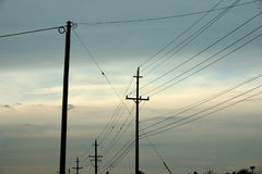 Telephone Pole Silhouettes Stock Photography