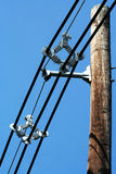 Telephone pole with wires Royalty Free Stock Image