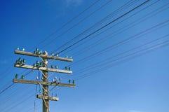 Telephone pole Stock Photos