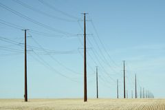 Telephone Poles Stock Photo