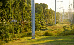 Telephone Poles and High Tension Power Cables Stock Photos