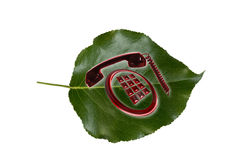 Telephone sign on green leaf Stock Photo