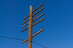 Telephone/Telegraph pole Royalty Free Stock Photos