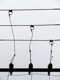 Telephone Wires. A set of telephone wires with different heights in silhouette Royalty Free Stock Photo