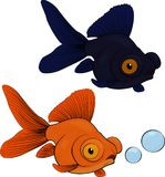 Telescope fish  on white background. Telescope orange and black cartoon fish with big eyes  on white background Royalty Free Stock Photo