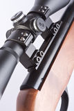 Telescopic sight. On a pneumatic rifle Royalty Free Stock Images