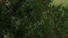 Telesilla de la opinión del cablecarril del POV en bosque almacen de video