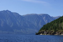 Teletskoe lake Royalty Free Stock Image