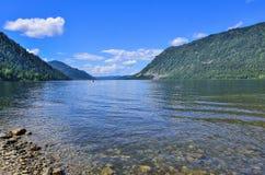 Teletskoye or Golden lake. Altai mountains summer landscape Royalty Free Stock Images