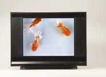 Televisão a alta definição Foto de Stock