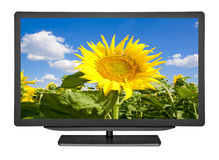Television. Flat television on the white backgrounds Royalty Free Stock Images