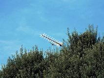 Television antenna green foliage. Television antenna rising above green foliage against a blue sky background Royalty Free Stock Photography