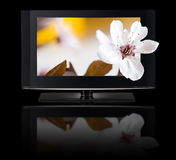 televisione 3D. Affissione a cristalli liquidi della TV in HD 3D. Fotografia Stock