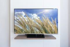 Televisione della TV, fiore dell'erba sul fondo bianco della parete dello schermo spirito Fotografia Stock