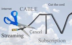 Telewizja kablowa sznura rozcięcie Zdjęcia Royalty Free