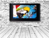 Telewizyjny ustawiający na starej ścianie zdjęcie royalty free