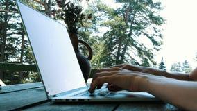 Teleworking, komunikacja na Internetowej lub dystansowej edukaci naturą, kobieta pisać na maszynie na laptopie outdoors wewnątrz zbiory