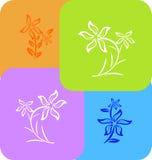 Telha da flor ilustração royalty free
