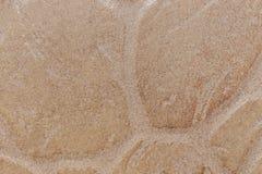 Telha da pedra decorativa Fotos de Stock