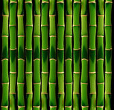 Telha de bambu Foto de Stock