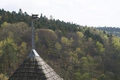 Telha de madeira no telhado Imagens de Stock