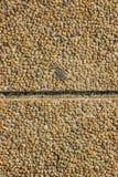 Telha de pedra Imagens de Stock