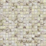 Telha do mosaico Fotos de Stock Royalty Free